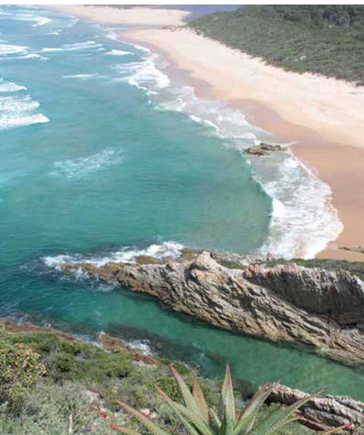 De Hoop Marine Protected Area Celebrates 30 years in 2015