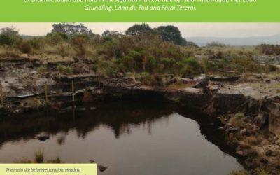Pietersieliekloof Wetland Rehabilitation Project