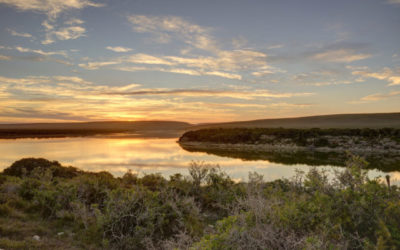 Spend a romantic honeymoon at De Hoop Nature Reserve