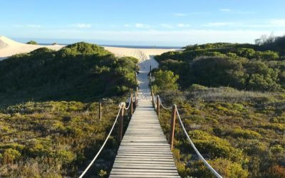 A Yoga Retreat At De Hoop Nature Reserve With Instructor Kate Ball