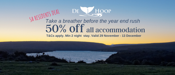 50% off all accommodation