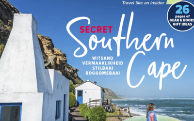 THE SECRET SOUTH