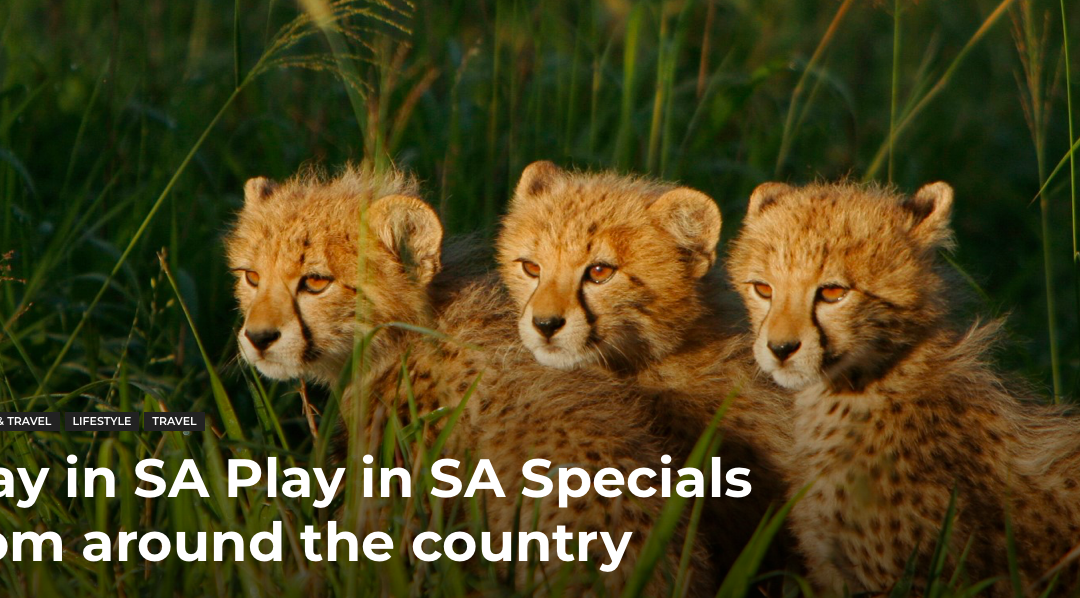 Stay in SA Play in SA Specials from around the country