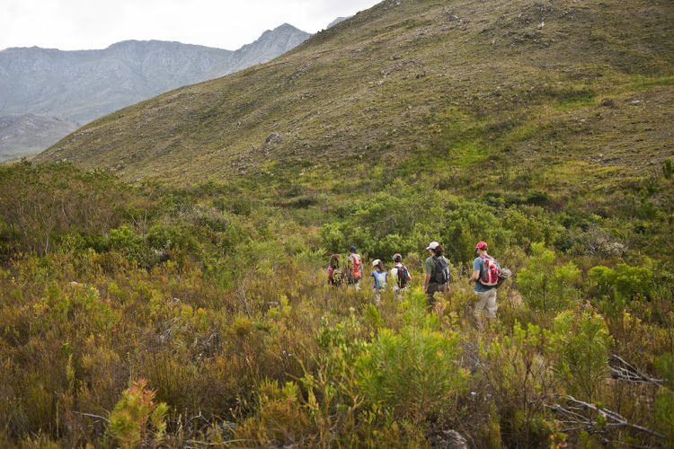 12 gorgeous spots for a day hike in the Western Cape during lockdown.
