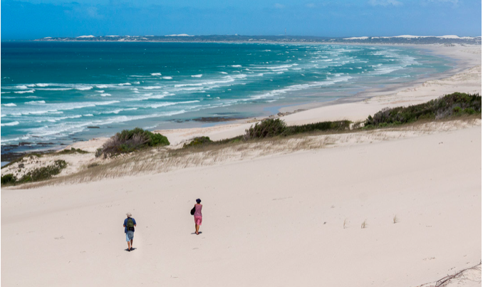 15 things to do at De Hoop Nature Reserve in the Overberg