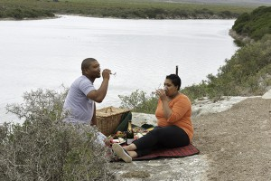 Picnics alongside the Vlei