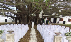 Ceremony under the trees at De Hoop