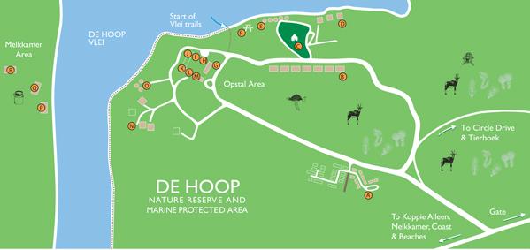 De Hoop Village De Hoop Collection