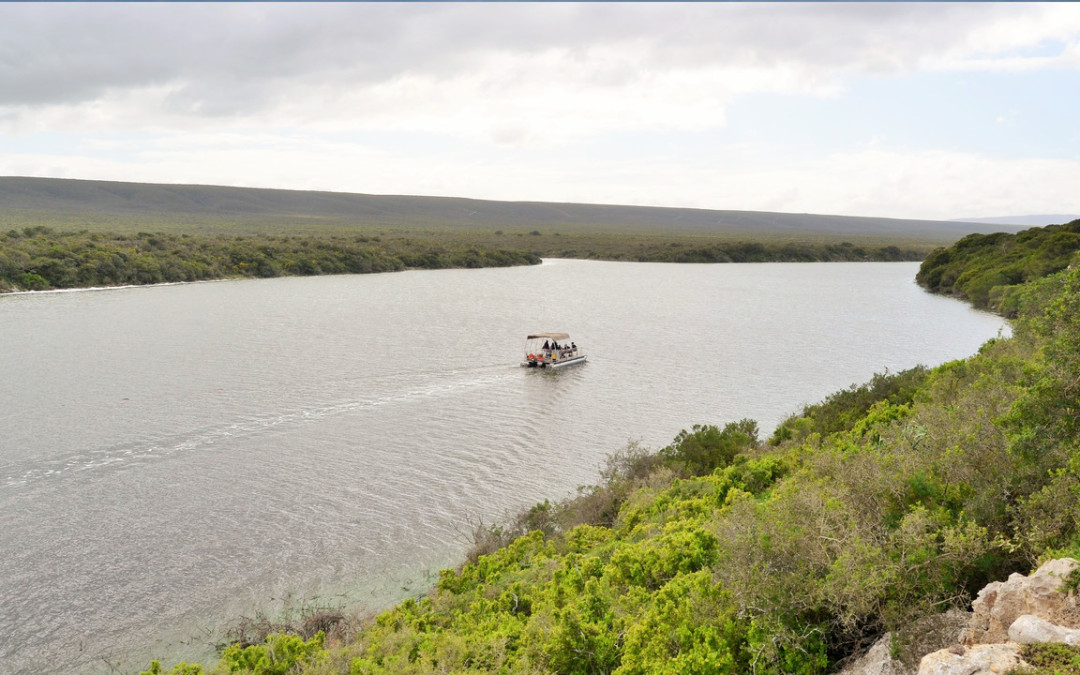 Guided Eco Boat Trip