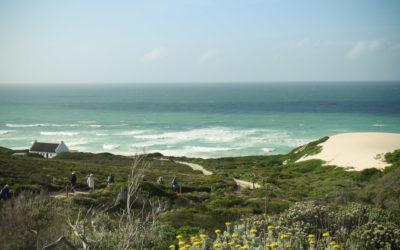 Sight for Shore Eyes – De Hoop's Abundant Shoreline