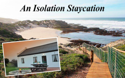 An Isolation Staycation