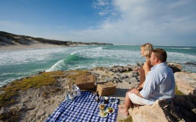 Explore scenic Cape routes with this fabulous 7-day 'Wine and Whales' tour