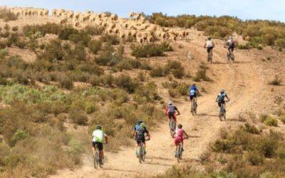 Mountain bike through the wild terrain at De Hoop Nature Reserve