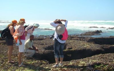 De Hoop Nature Reserve is het best bewaarde geheim van de Kaap
