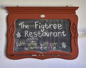 Welcome to the Figtree